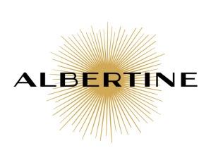 Librairie Albertine New York